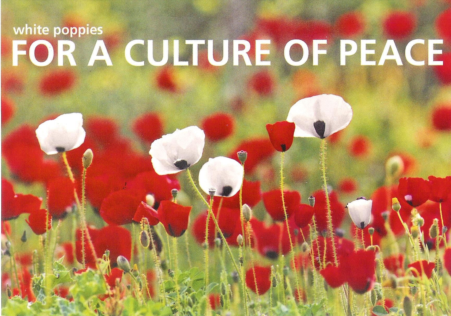 "Postcard of a field of red and white poppies with text ""White poppies for a culture of peace""."