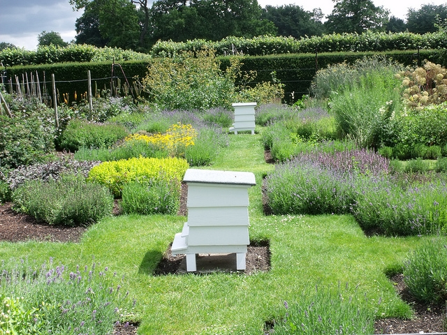 Photo of a large herb garden with beekeeping boxes; pCourtesy of Flickr cc/Elliot Brown