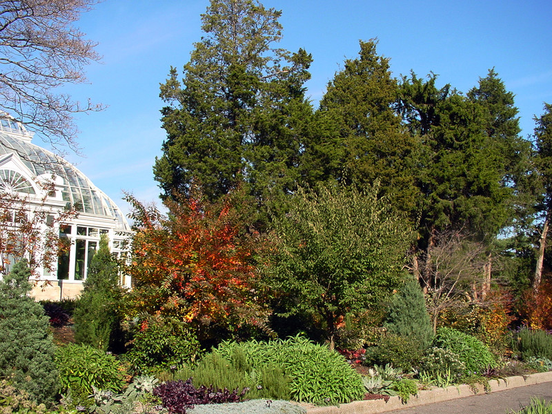 A segment of The Ladies' Border at NYBG in autumn; photo by MW