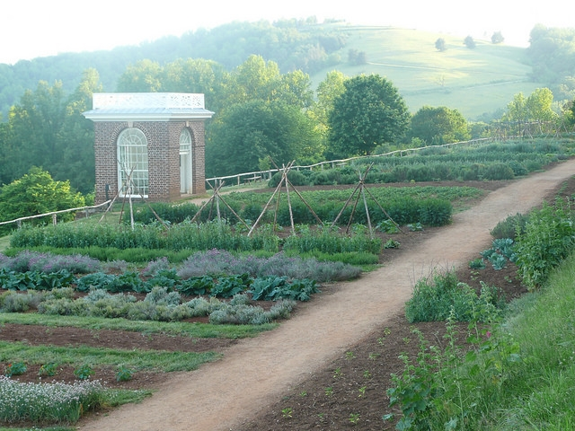 The Vegetable Garden at Monticello; photo Courtesy of Flickr cc/Voix de l'Ain