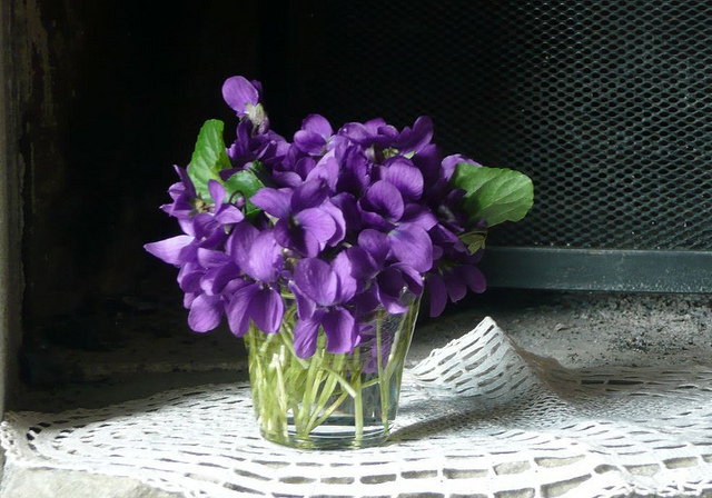 Blue violets for faithfulness; photo courtesy of Flickr cc/nociveglia