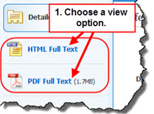 Article view options in CINAHL