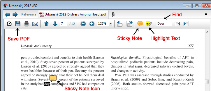PDF Viewer Panel