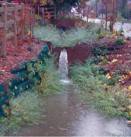 Image of the Carkeek Cascade, a cascading pool that captures stormwater runnoff.