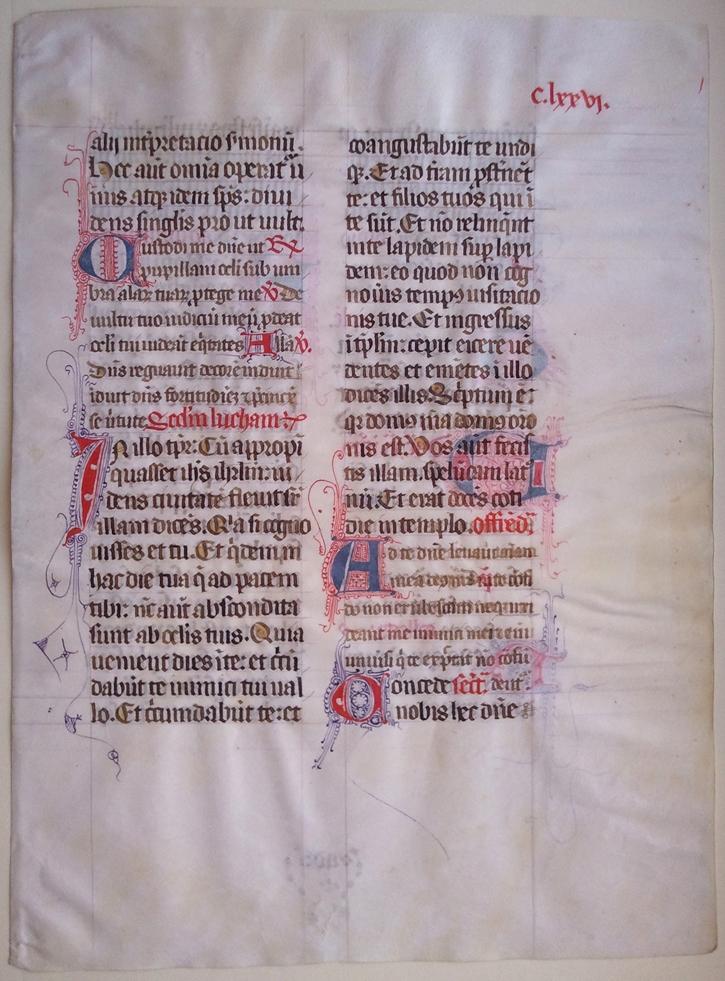 carthusian-monks-leaf