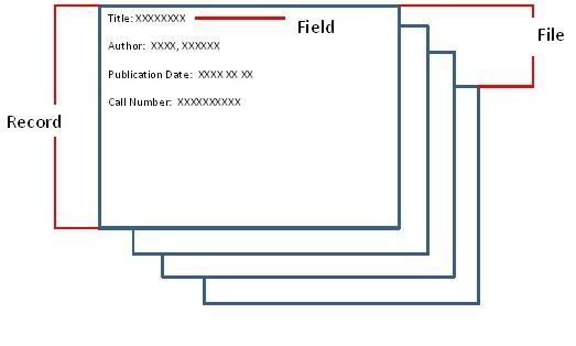 field record file