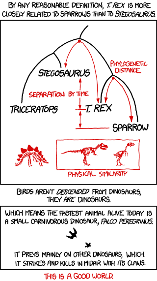 birds and dinosaurs comic by xkcd