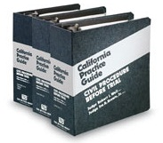 Rutter Group California Practice Guides