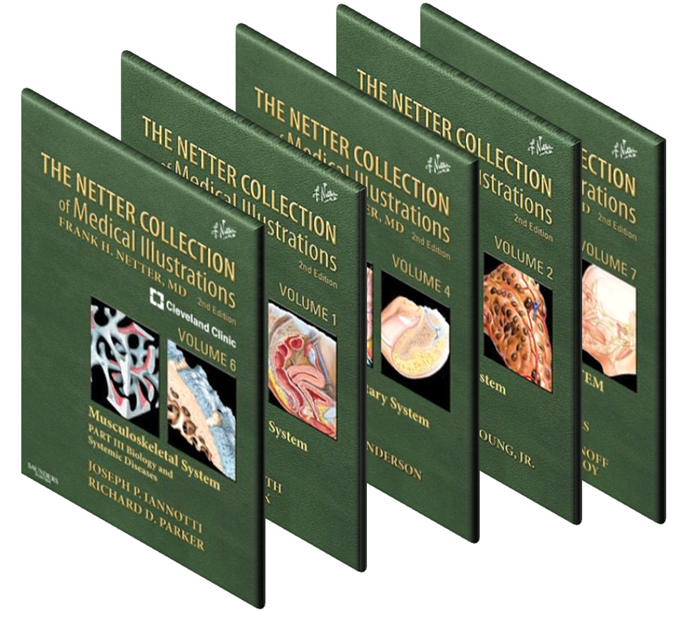 Netter Collections