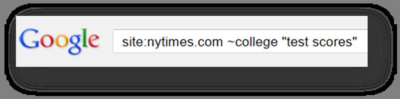 modified google search