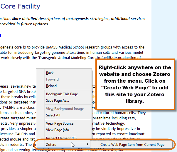 screenshot of zotero  tab to create a web page item