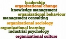 Organizational behaviour word cloud