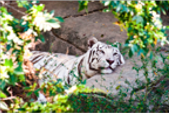 Extremely pixelated image of a white tiger.