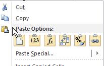 Excel paste special