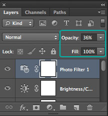 Layers Palette - Opacity and Fill