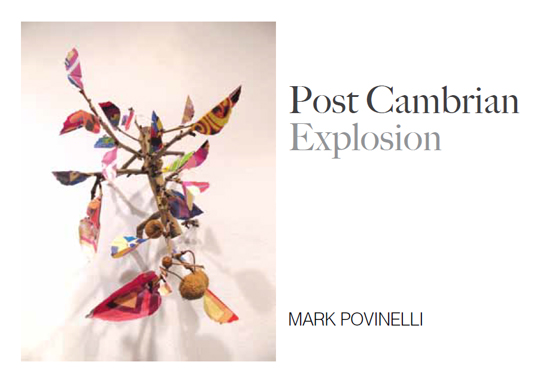 Post Cambrian Explosion Art Show 2012