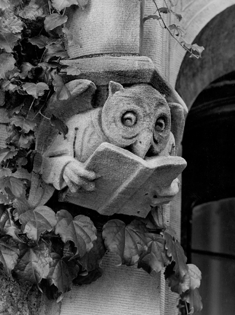 Gargoyle on campus of owl reading book