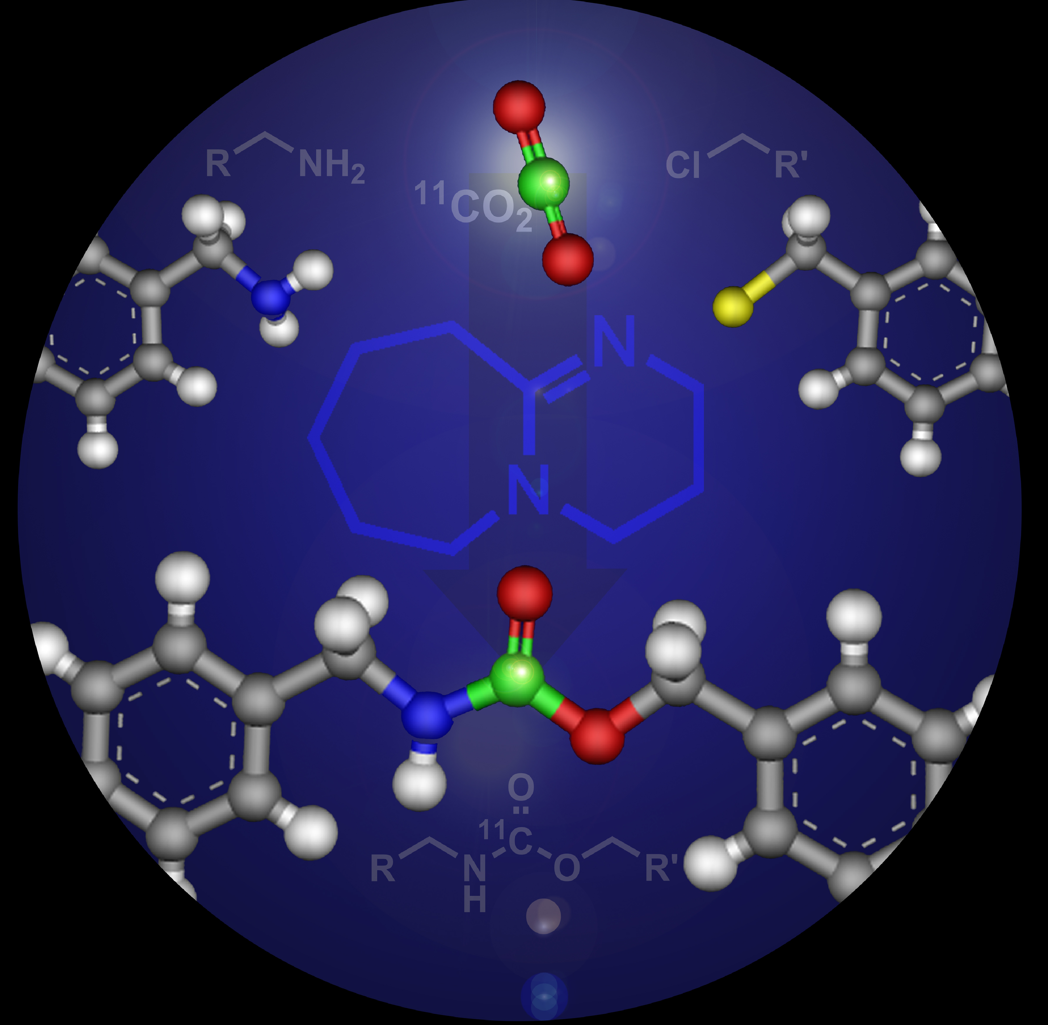 Carbamate-containing compounds - Brookhaven Natl Labs