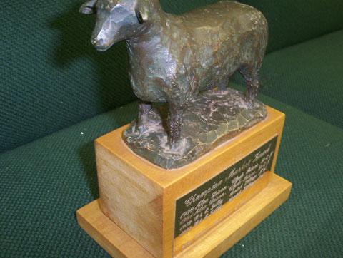 Champio, Market, Lamb, Trophy
