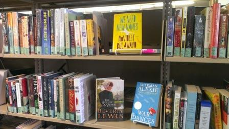 Photo of leisure book shelves at Staley Library
