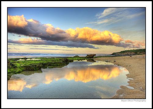 Maui, courtesy of Bryan Elkus