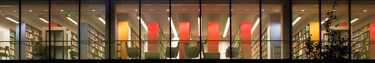 Library bookshelves through a window