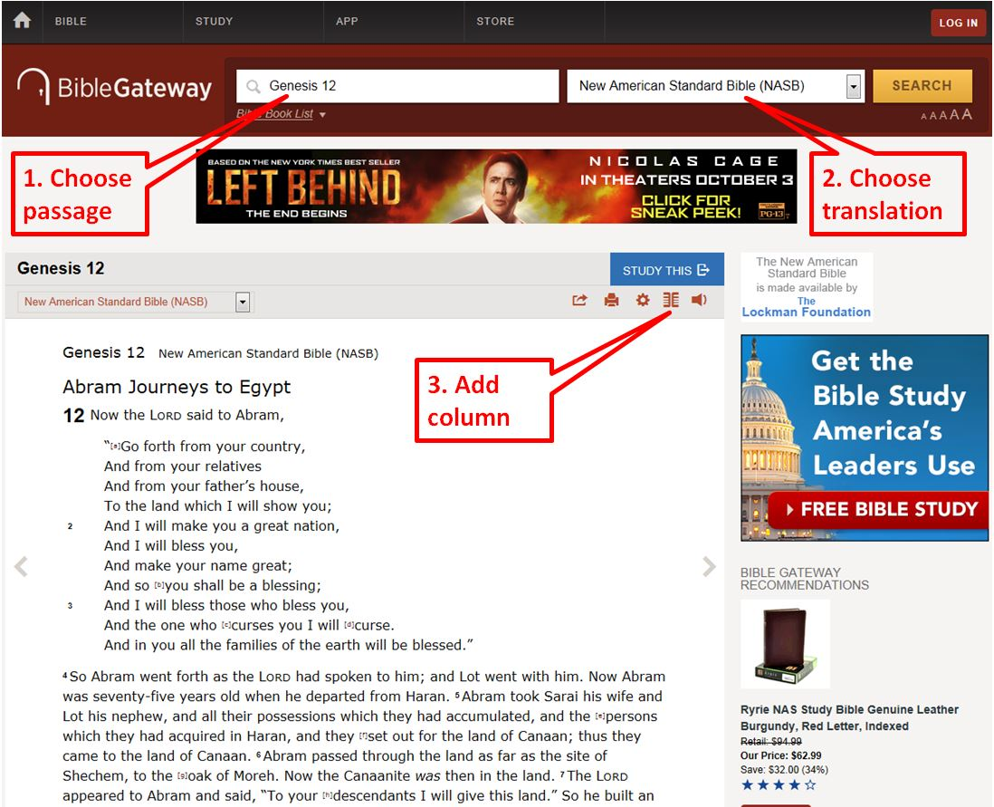 Bible Gateway Search Boxes
