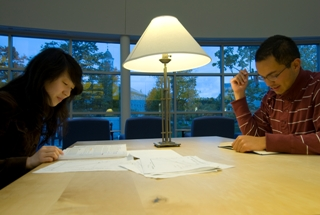 students working at the library