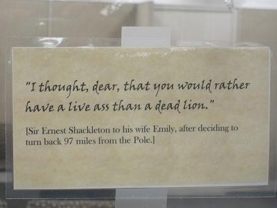 Shackelton Quote