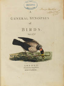 Title page of book with coloured engraving of bird