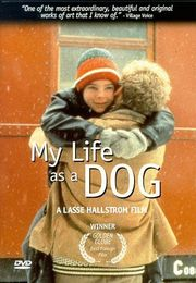 My Life as a Dog DVD cover
