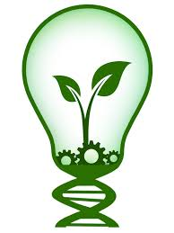 Illustration of Light Bulb With Plant Growing Inside