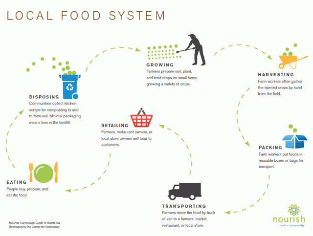 flow chart diagram of a local food system