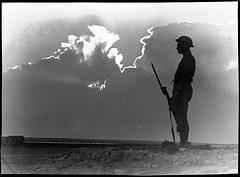 El Alamein by Hurley, Frank, 1885-1962.