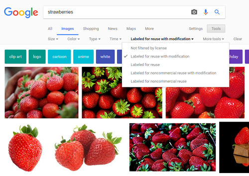 Example Image Search In Google modified by Usage Rights