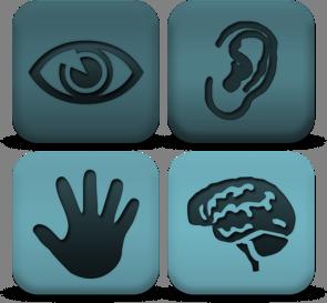 Senses logos