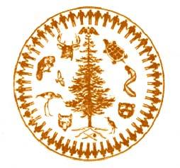 Confederacy Symbol
