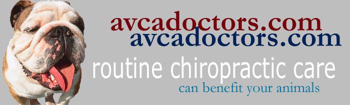 AVCA Doctors logo