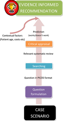 Critical Appraisal flow diagram