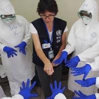 http://www.who.int/csr/disease/ebola/ebola-6-months/en/