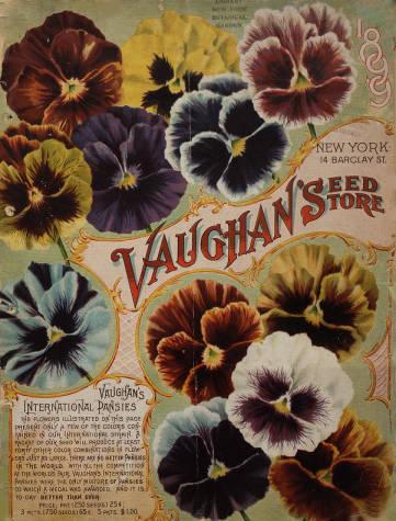 Vaughan's Seeds 1899