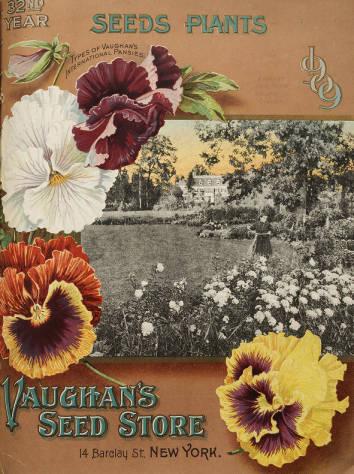 Vaughan's Seeds 1909