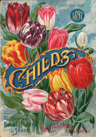Tulips on cover of 1897 John Lewis Childs Fall Catalogue of Bulbs Plants and Seeds