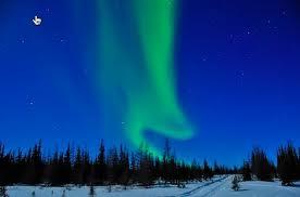 night sky graphic