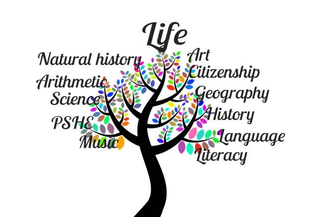 Multidiscplinary OER