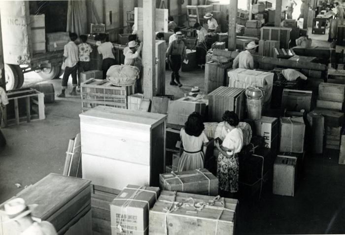 Sorting Through Luggage at Minidoka Internment Camp, 1940's.