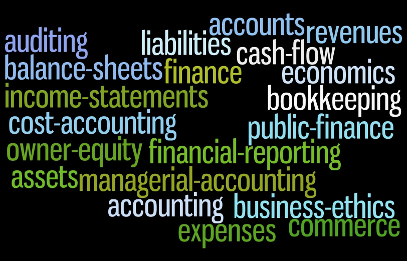 Word cloud of accounting terms