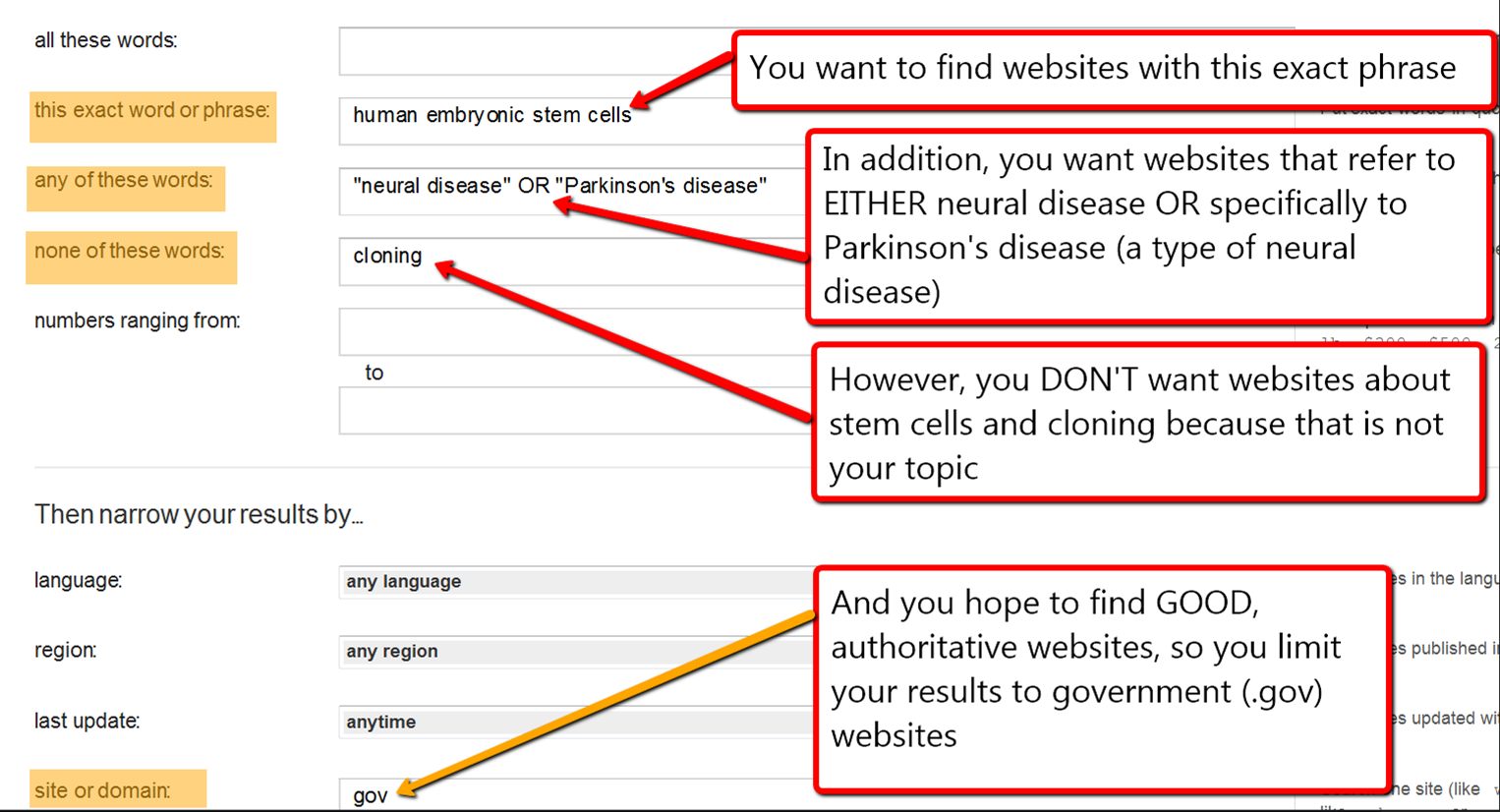 screenshot of the advanced search options in Google, as outlined in the text after the image