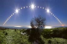 stars over a tree