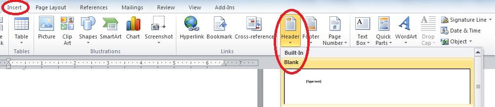 screen capture of insert>header>blank in Word